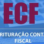 Empresas têm até 29 de julho para entregar Escrituração Contábil Fiscal